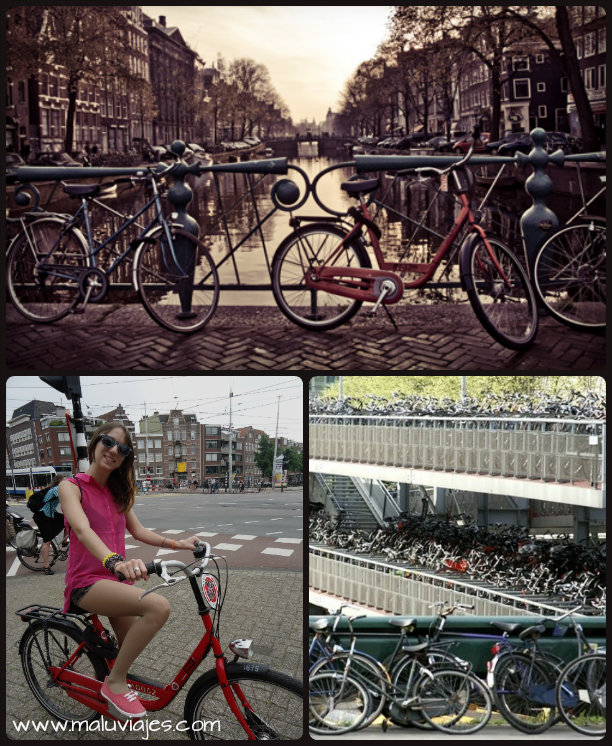 collage bicis