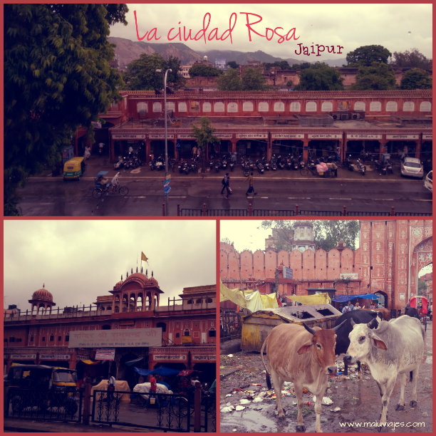 collage jaipur