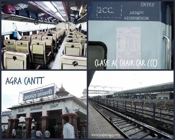 collage trenes