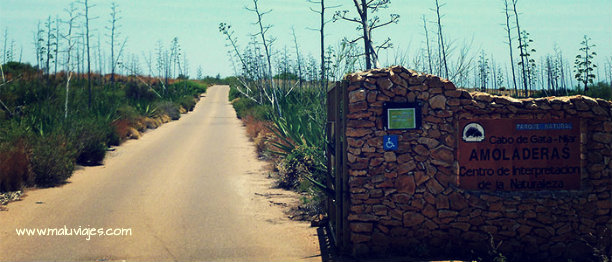 maluviajes-cabo-de-gata-almeria-playa-amoladeras